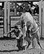 Adams County Rodeo 1976