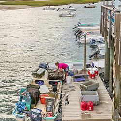 Nonesuch Oysters employee Kim Clark, sorts oysters on a dock at Pine Point in Scarborough, Maine.