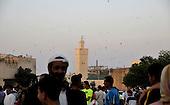 Veils of Fez