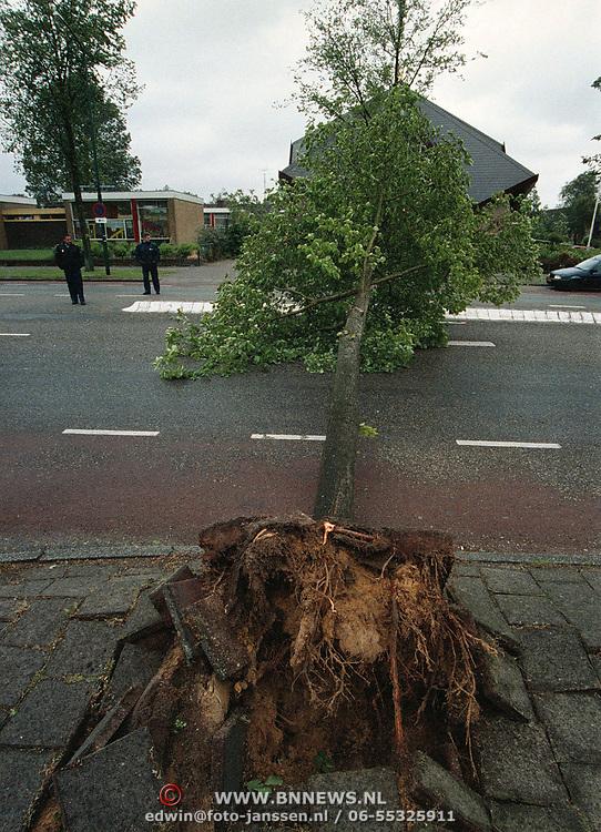 Stormschade, boom op over de weg Gemeenlandslaan Huizen