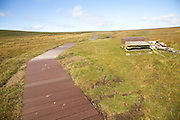 Footpath walkway, Hermaness, Unst, Shetland Islands, Scotland
