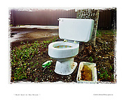 toilet bowl on the lawn