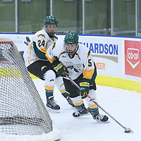 2nd year forward Jaycee Magwood (5) of the Regina Cougars in action during the Women's Hockey Homeopener on October 7 at Co-operators arena. Credit: Arthur Ward/Arthur Images