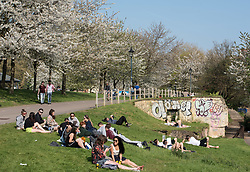 © Licensed to London News Pictures. 09/04/2017. Bristol, UK. Crowds of young people relax in the sun in Castle Park in the centre of Bristol on the hottest day of 2017 sofar. Photo credit : Simon Chapman/LNP