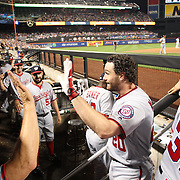 NEW YORK, NEW YORK - July 07: Daniel Murphy #20 of the Washington Nationals is congratulated on his solo home run in the seventh inning as he returns to the dugout during the Washington Nationals Vs New York Mets regular season MLB game at Citi Field on July 05, 2016 in New York City. (Photo by Tim Clayton/Corbis via Getty Images)