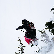 Colin Poff skis off into the trees during a blizzard at Mount Baker Ski Area.