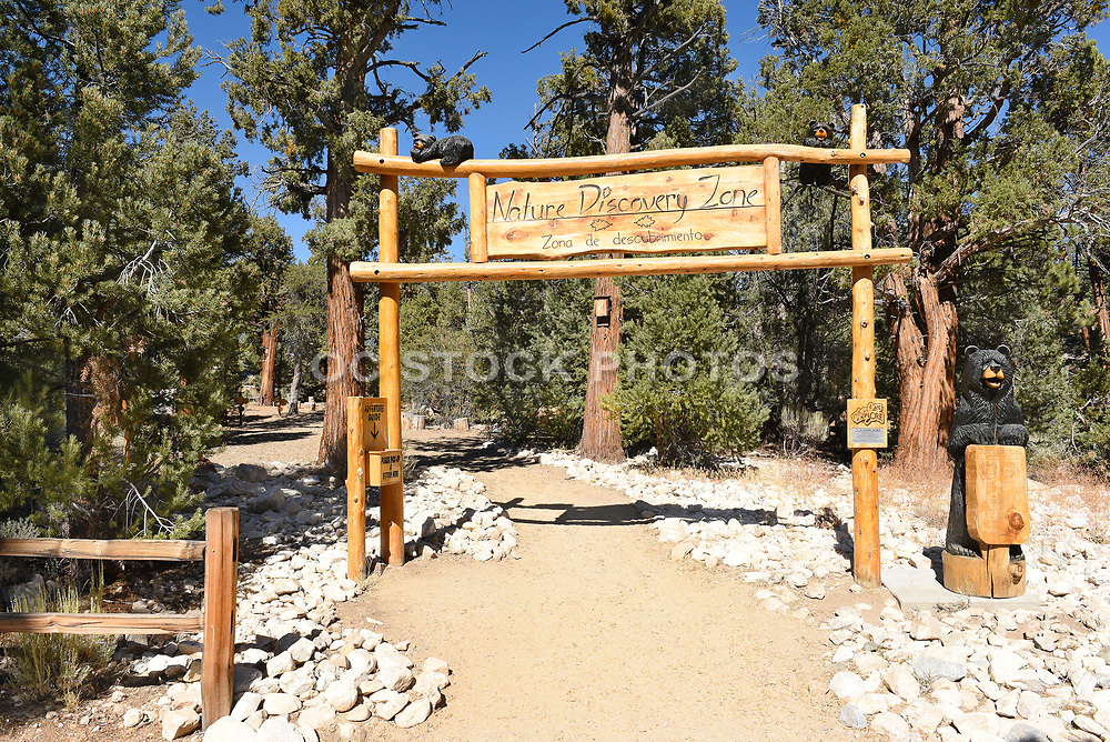 Nature Discovery Zone in Big Bear California