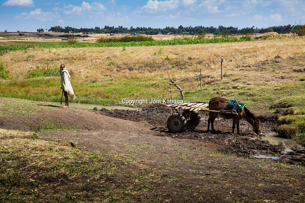 A man finds water for his horse before offering his services as a makeshift ambulance in rural Ethiopia. Motta, Ethiopia