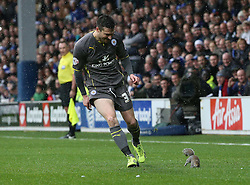 Leicester City's David Nugent chases the squirrel that stopped play - Photo mandatory by-line: Robin White/JMP - Tel: Mobile: 07966 386802 21/12/2013 - SPORT - FOOTBALL - Loftus Road - London - Queens Park Rangers v Leicester City - Sky Bet Championship