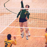 3rd year setter, Satomi Togawa (5) of the Regina Cougars during the Women's Volleyball home game on Sat Jan 19 at Centre for Kinesiology, Health & Sport. Credit: Arthur Ward/Arthur Images