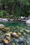 A green pool in Lynn Creek at Lynn Headwaters Regional Park in North Vancouver, British Columbia, Canada.  Photographed from along the Lynn Loop Trail.