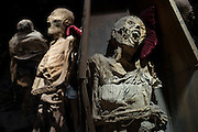Mummies of Guanajuto. City of Guanajuato, Mexico.