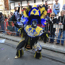 24 February 2009: A member of the Zulu Tramps performs along the St. Charles Avenue parade route during Mardi Gras day in New Orleans, Louisiana. Mardi Gras is an annual celebration that ends at midnight with the start of the Catholic Lenten season which begins with Ash Wednesday and ends with Easter..