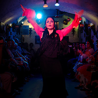 Una gitana baila en un espectáculo Flamenco en las cuevas gitanas del Sacromonte Granada, Andalucia. España. A gypsy flamenco dancing in a show in the gypsy caves of Sacromonte Granada, Andalucia. Spain