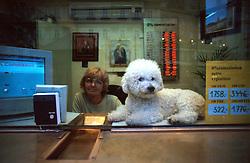 CZECH REPUBLIC PRAGUE FEB00 - A woman and her dog attend a foreign currency exchange booth in the centre of Prague. ..jre/Photo by Jiri Rezac..© Jiri Rezac 2000..Tel:   +44 (0) 7050 110 417.Email: info@jirirezac.com.Web:   www.jirirezac.com