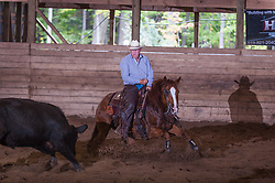 September 23, 2017 - Minshall Farm Cutting 5, held at Minshall Farms, Hillsburgh Ontario. The event was put on by the Ontario Cutting Horse Association. Riding in the $25,000 novice Horse Non-Pro Class is John Koop on Head Cat owned by the rider.