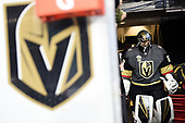 2017-18 VGK Regular Season Selects