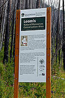 WA15244-00...WASHINGTON - Sign detailing the formation and value of the Loomis Natural Resources Conservation Area and the groups involved in its creation located along Forest Road 150 in Loomis State Forest.