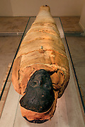 """GEORGES LABIT MUSEUM, TOULOUSE, FRANCE - MARCH 03 - EXCLUSIVE : A general view from behind of the Egyptian mummy on March 3, 2009 in the Georges Labit Museum, Toulouse, France. The Egyptian mummy arrived in Toulouse in 1849, encased in a sarcophagus labelled """"In-Imen"""" from the 7th or 8th century BC. It is preserved at the Labit Museum since 1949. The mummy is now the subject of a very rare tissue sampling operation to determine its datation.  (Photo by Manuel Cohen)"""