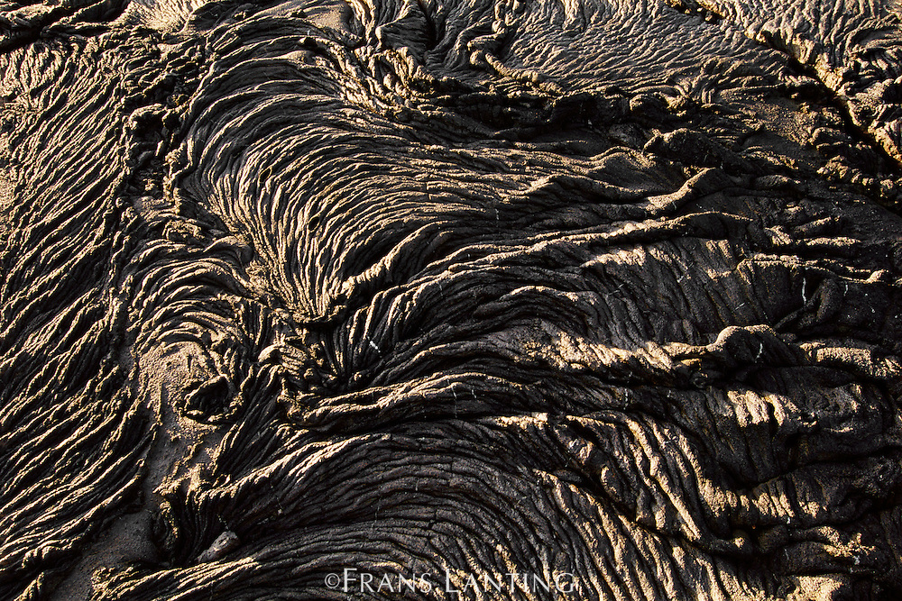 Pahoehoe lava, Galapagos Islands