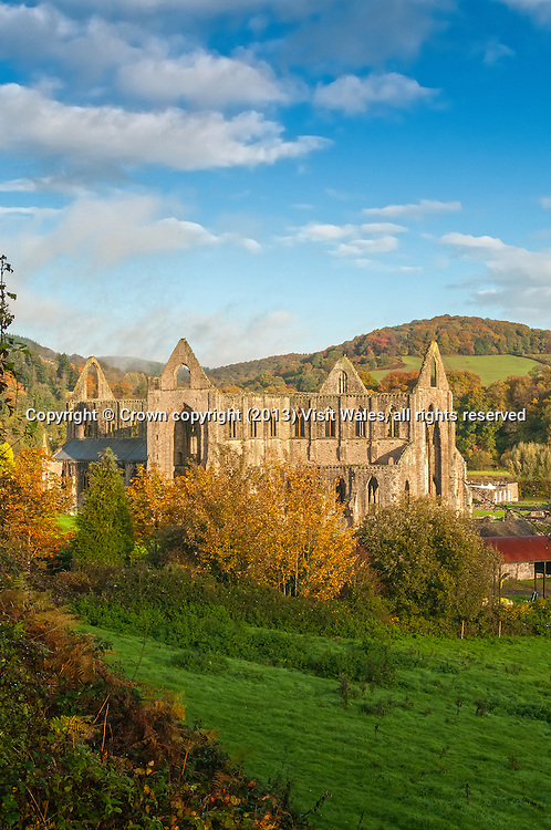 General view from the south east in autumn<br /> Tintern Abbey <br /> Cadw Sites<br /> SAMN: MM102<br /> NGR: SO533000<br /> Monmouthshire<br /> South<br /> Abbeys<br /> Medieval<br /> Religious, Ritual and Funerary<br /> Historic Sites