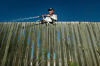 JEROME A. POLLOS/Press..Bill Silva leans over his fence to water his lawn at 11th Street and Lakeside on Wednesday morning.