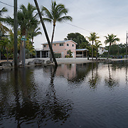 KEY LARGO, FLORIDA, NOVEMBER 15, 2016<br /> Several inches of water in areas flooded as a result of the flooding that follows a super moon. This is a regular occurrence in parts of Florida. <br /> (Photo by Angel Valentin/Freelance)