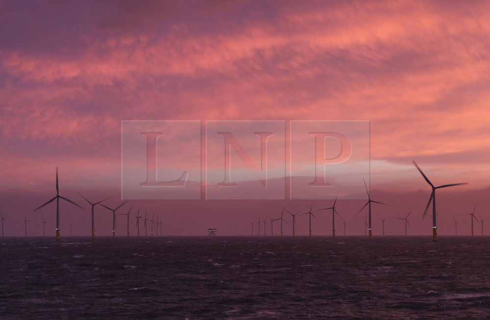 © Licensed to London News Pictures. 20/03/2014. North Wales, UK. A pink sky at dawn over the Gwynt y Mor Offshore Wind Farm in North Wales this morning, 20th March 2014. Photo credit : Rob Arnold/LNP
