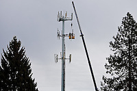 JEROME A. POLLOS/Press..Workers tend to a cellular tower high above the tree line Friday in downtown Coeur d'Alene.