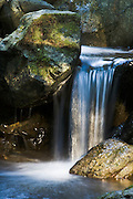 Waterfall on stream along Redwood Nature Trail, Siskiyou National Forest, Oregon.