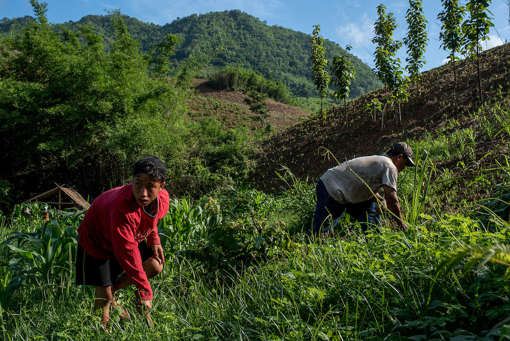 Farmers tend to their hillside fields near the village of Khoc Kham. The village is not connected to the main electrical grid and many residents operate their own turbines to power lights and sometimes small appliances.