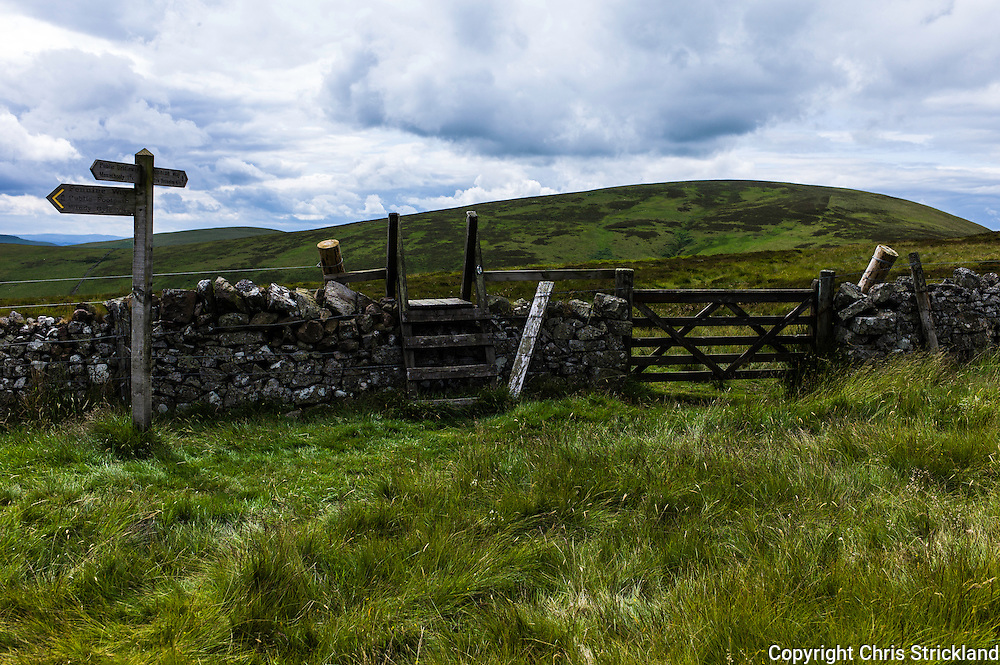 Pennine Way, Yetholm, UK. 22nd July 2015. Looking west from Northumberland at the Scottish border crossing towards The Curr (564m).