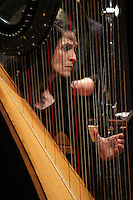 The University of Chicago's Contempo celebrated 50 years this Sunday with a concert at the Reva and David Logan Center located at 915 E. 60th Street.<br /> <br /> 0647 – Allison Attar on the Harp.