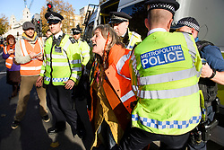 © Licensed to London News Pictures. 14/11/2018. London, UK. A woman is detained by police as Climate change campaigners, waring of food shortages due to climate change, protest at the gates of Downing Street in London. . Prime Minister Theresa May will hold a cabinet meeting this afternoon to discuss a possible Brexit agreement. London, UK. Photo credit: Ben Cawthra/LNP