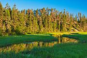 Log Creek<br />Nestor Falls<br />Ontario<br />Canada