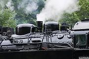 historische Dampfeisenbahn Selketalbahn, Harzer Schmalspurbahn HSB, Alexisbad, Harz, Sachsen-Anhalt, Deutschland | historical steam railway Selketalbahn HSB, Alexisbad, Harz, Saxony-Anhalt, Germany
