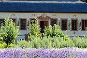 Prinz-Georg-Garten, Pretlak'sches Gartenhaus, Darmstadt, Hessen, Deutschland   Prinz Georg garden, Darmstadt, Germany