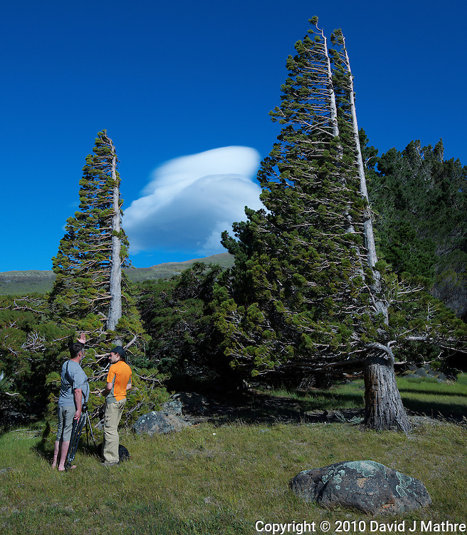 Thom and Thomas Discussing the Photography of Wind Blown Trees in Patagonia. Estancia Helsingfors in Argentina. Image taken with a Nikon D3x and 16-35 mm f/4 lens (ISO 125, 26 mm, f/11, 1/250 sec).