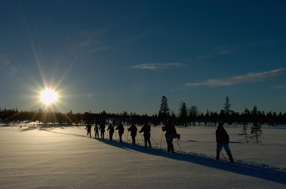 Cross country skiing ecotourism, Grovelsjon nature reserve, Dalarna, Sweden