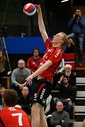 20170225 NED: Eredivisie, Valei Volleybal Prins - Coolen - Alterno: Ede<br />Felix Meuer of Valei Volleybal Prins <br />©2017-FotoHoogendoorn.nl / Pim Waslander