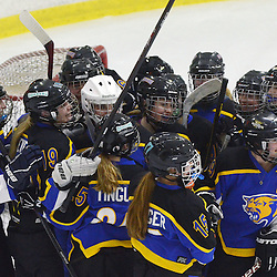 Staff photos by Tom Kelly IV<br /> East players celebrate their win during the Downingtown East vs Unionville girls Flyer's Cup Championship, Wednesday night March 19, 2014 at Ice Line in West Goshen.