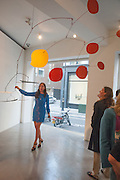 PILAR ORDOVAS, Pilar Ordovas hosts a Summer Party in celebration of Calder in India, Ordovas, 25 Savile Row, London 20 June 2012