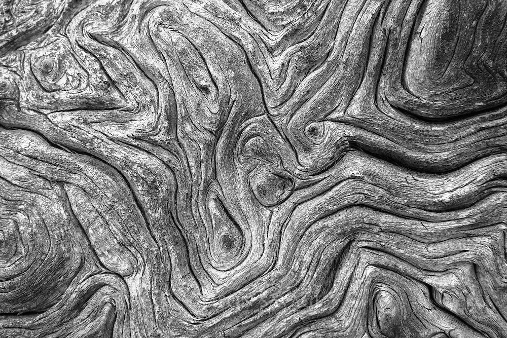 Abstract patterns in  the Scapegoat Wilderness, Montana.