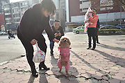 CHENGDU, CHINA - JANUARY 16: (CHINA OUT) <br /> <br /> A poodle named Barbie walks on his hind legs on January 16, 2016 in Chengdu, Sichuan Province of China. Barbie\'s left foreleg was amputated after a car accident in 2010, and then he started practicing walking on hind legs. Now he can walk one kilometer on his hind legs. <br /> ©Exclusivepix Media