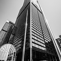 Willis Tower (Sears Tower) Chicago black and white picture. Willis Tower is one of the tallest buildings in Chicago and the world.