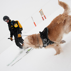 Ils sont pisteurs secouristes, CRS ou gendarmes et ont pour point commun de travailler avec des &eacute;quipiers pas comme les autres: des chiens d'avalanche. On parle d'&eacute;quipe cynophile ou de bin&ocirc;me, le ma&icirc;tre chien et son chien. <br /> Gr&acirc;ce &agrave; son odorat hors du commun, le chien rep&egrave;re les effluves des personnes enfouies sous la neige, et permet leur secours, mais cette pr&eacute;cieuse capacit&eacute; doit &ecirc;tre d&eacute;velopp&eacute;e par un travail de chaque instant, en p&eacute;riode de travail, d'entra&icirc;nement, ou m&ecirc;me de jeu.<br /> Janvier 2010 / Chamrousse / Is&egrave;re(38) / FRANCE