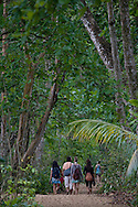 Tourists on trail behind beach - Cahuita National Park, Caribbean coast, Costa Rica.<br />