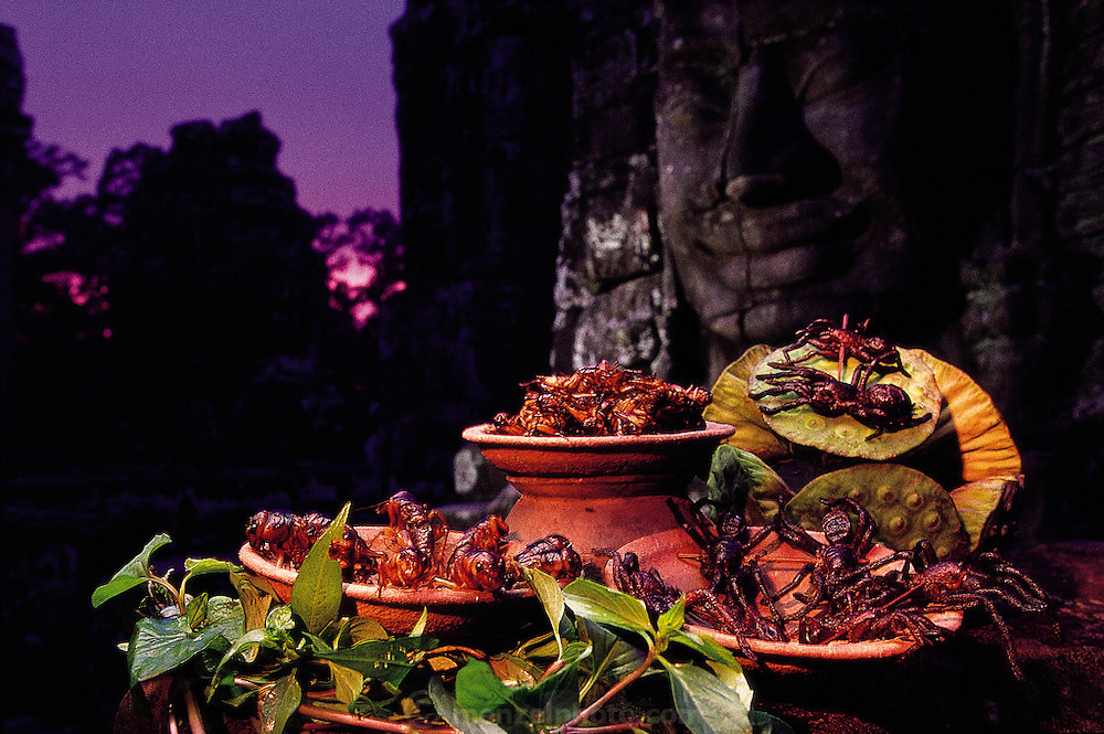 A sunset setup of fried tarantulas and crickets on the Bayon Temple of the internationally treasured Angkor Wat ruins, Siem Reap, Cambodia. (Man Eating Bugs page 54,55)