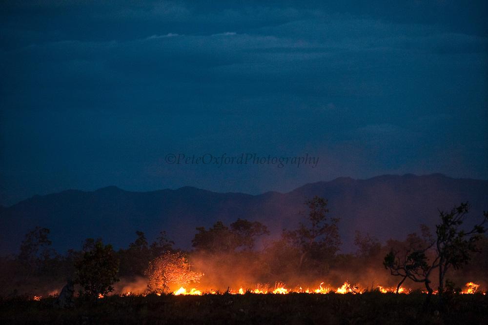 Savannah Fire<br /> Kanuku Mountains<br /> Rupununi<br /> GUYANA<br /> South America