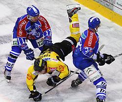 06.01.2012, Albert Schultz Halle, Wien, AUT, EBEL, UPC Vienna Capitals vs KHL Medvescak Zagreb, im Bild Vjaceslav Truhno, (KHL Medvescak Zagreb, #11), Francoise Fortier, (UPC Vienna Capitals, #15) und Alan Letang, (KHL Medvescak Zagreb, #28) // during the icehockey match of EBEL between UPC Vienna Capitals (AUT) and KHL Medvescak Zagreb (CRO) at Albert Schultz Halle, Vienna, Austria on 06/01/2012,  EXPA Pictures © 2012, PhotoCredit: EXPA/ T. Haumer